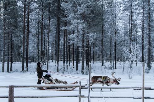 Rovaniemi-259642 - Copia